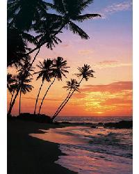 329 Maldive Evening by