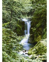 364 Waterfall in Spring by