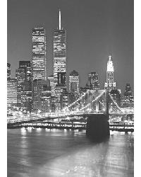 417 Brooklyn Bridge by