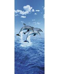 599 Three Dolphins by