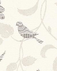 721744 Bird Wallpaper by