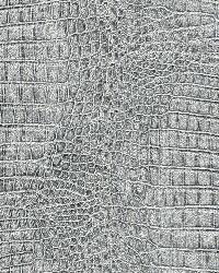 AQ422528 Wallpaper by