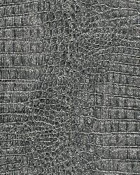 AQ422542 Wallpaper by