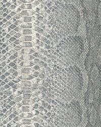 AQ423112 Wallpaper by