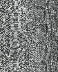 AQ423150 Wallpaper by