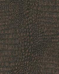 AQ423426 Wallpaper by