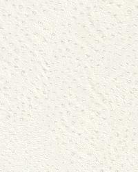 AQ423655 Wallpaper by