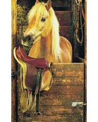 DS5068 Dreamy Pony Mural by  Washington Wallcoverings