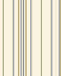 Wide Pinstripe Wallpaper BS5466 by