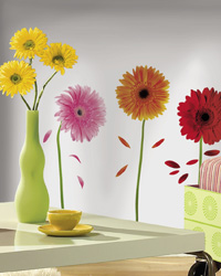 Small Gerber Daisies Peel  Stick Wall Decals RMK1553SCS by
