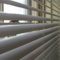 Window Blinds - Roller Shades