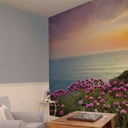Wall Murals and kids murals for home decorating.