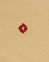 Zumbra Valentine by