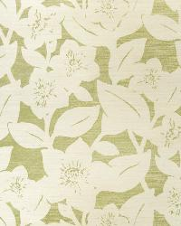 In Bloom Sisal Green On Oyster by