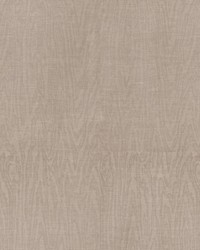 Foret Sheer Trough Grey by