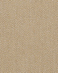 Pea Gravel Dew Moss by