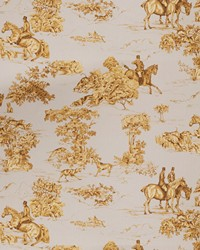 Elway Hall Toile Bd Daybreak by
