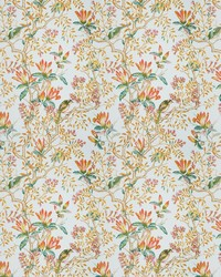 Buchoz Floral Mandarin by