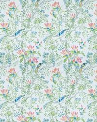 Buchoz Floral Primavera by