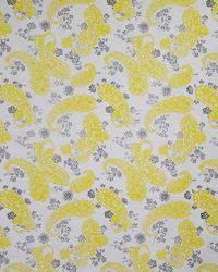 Yellow Color Theory Stone Gray Fabric Maxwell Fabrics Brixton 443 Sunflower