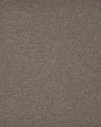 Broome-ess 1050 Kit Fox by