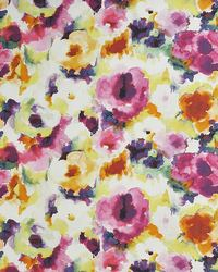 Color Theory Full Bloom Fabric Maxwell Fabrics Color Splash 313 Spring