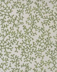 Color Theory Mallard Fabric Maxwell Fabrics Coralline 204 Wakame