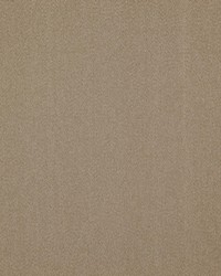 Counting Sheep 902 Taupe by