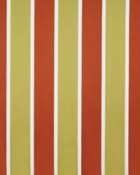 Orange Color Theory Sunset Fabric Maxwell Fabrics Fenton 332 Burnt Orange