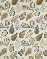 Brown Color Theory Sandy Beach Fabric Maxwell Fabrics Glide 508 Earth