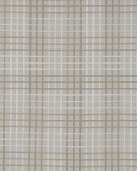 Color Theory Fools Gold Fabric Maxwell Fabrics Henri 504 Bisque