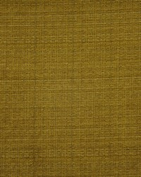 Intaglio 822 Gold by