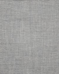 Parquet 126 Dolphin by