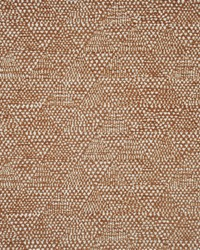 Pasture 427 Vicuna by