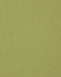 Quilt 919 Moss by
