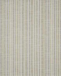 Renzo 243 Kiwi by