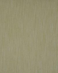 Color Theory Seaglass Fabric Maxwell Fabrics Staple 237 Agave