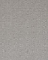 Brown Color Theory Fools Gold Fabric Maxwell Fabrics Ventura 513 Sand
