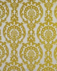 Color Theory Fools Gold Fabric Maxwell Fabrics Yolanda 533 Dynasty