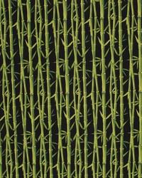 Bamboo Garden IO Black by