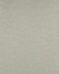 Grey Abstract Fabric  Galaxy Dove