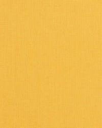 Spectrum Sunbrella Daffodil 480240000 by