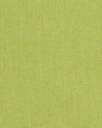 Spectrum Sunbrella Kiwi 480230000 by