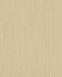 Spectrum Sunbrella Sand 480190000 by