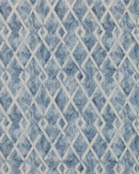 Paramount Trellis Chambray by