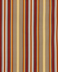 Finnimore Stripe Spice by