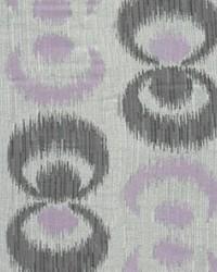 Focus Purple by