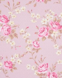 A0373 Pink Champagne by