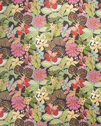 Jungle Safari Fabric  Divine Secrets Tropic