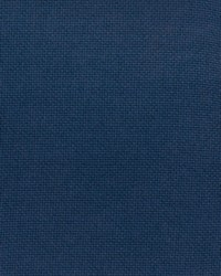 Blue Print Studio Outdoor Fabric  Pitta Bermuda Blue